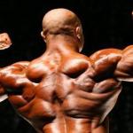 Testosterona: o hormônio que afeta homens e mulheres